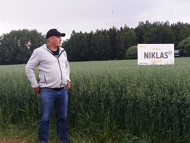Tilasiemenen kanssa järjestetyssä tilaisuudessa Pekka Kultin tilalla tutustuttiin Niklas-kaurauutuuteen.