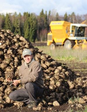"""Timo Rouhiaisen mukaan yksi tärkeimmistä asioista juurikkaan urakoinnissa on huolehtia oikeasta kylvösyvyydestä. """"Etenkin vanhemmissa suomalaisissa kylvökoneissa oikean kylvösyvyyden asettaminen voi olla todella hankalaa."""""""