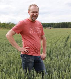 Matias Rönnqvist vehnäpellollaan Vaasassa 15.7.2020