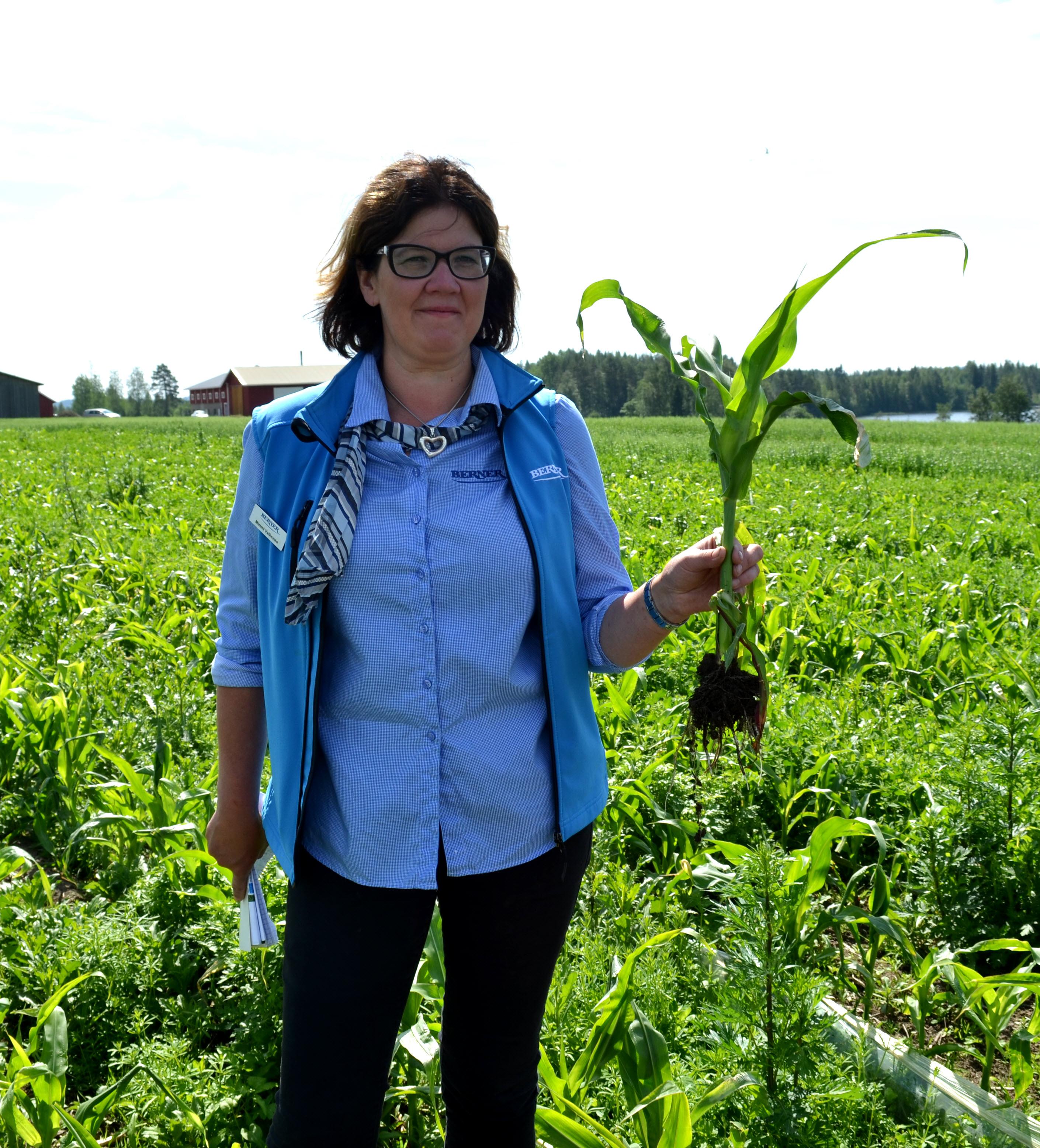 Viljelijän Bernerin Mimmi Valkonen on innoissaan viljelijöiden kiinnostuksesta kokeilemaan maissia ja öljykasveja.