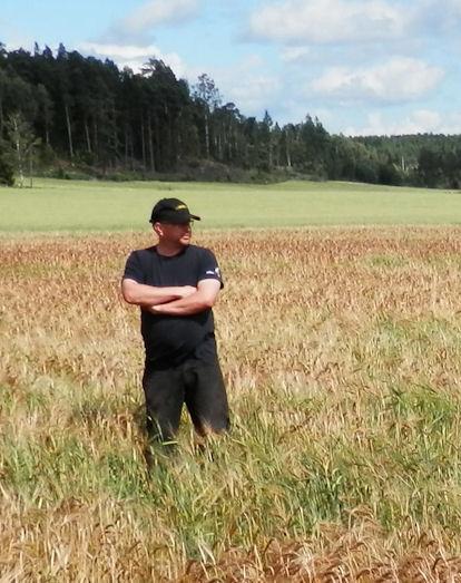 Isäntä Olli-Pekka Ruponen ohrapellolla Salon Halikossa