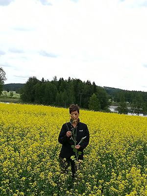 Hankkijan kanssa järjestetyssä tilaisuudessa mittailtiin hyvässä kukintavaiheessa olleita Synthia-kasvustoja. Kuvassa Katri Haavikko.